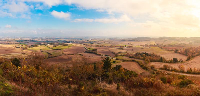 _MG_4153-Panorama